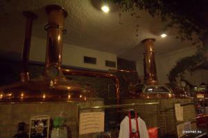 Пивовар Пегас